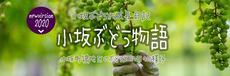 kosaka_SP_header200529.jpg